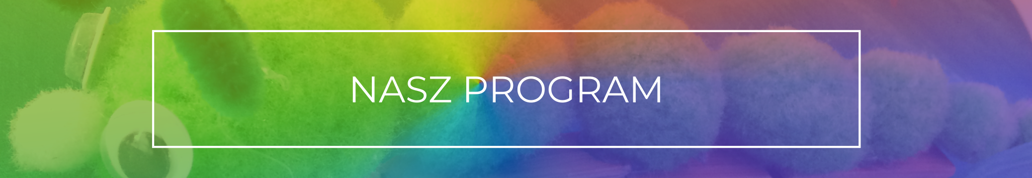 header nasz program